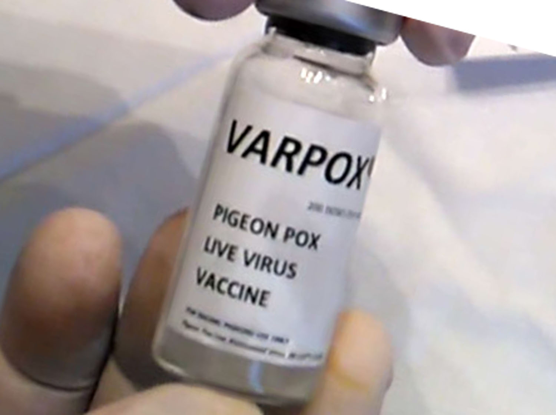 Названия вакцин от оспы голубей thumbnail